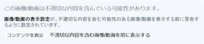 Twitter人工無能での画像検閲.png